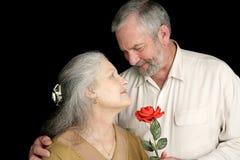 Rose pour son épouse Images libres de droits