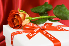 Rose on the present. Rose is lie on the present on the red background Royalty Free Stock Photo