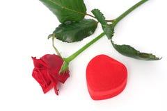 rose prezent Zdjęcie Stock