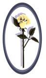 rose projektanta żółty Zdjęcia Stock