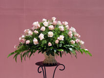 rose różowego bukiet. Fotografia Stock
