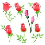Rose & ramoscello con le foglie messe royalty illustrazione gratis