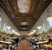 Rose Reading Room Royalty Free Stock Images