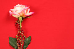 Rose on Red. Fantastic rose on red background with festive gold and red beads. Great use for background in a valentines day or mothers day design Stock Photo