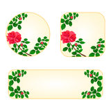 Rose red banners with a flowers vector. Rose banners and buttons with a flowers vector illustration stock illustration