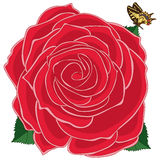 Rose red butterfly Stock Photo