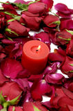 Rose and red candle Royalty Free Stock Images