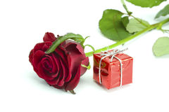Rose and red gift. On the isolated white background Royalty Free Stock Images