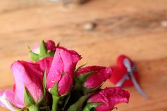 Rose with red hearts for Valentine's Day. Royalty Free Stock Photography