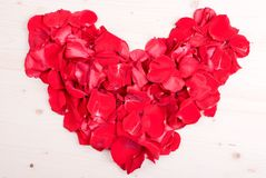 Rose with red petals with hearts for Valentine's Day on the boar Royalty Free Stock Photography