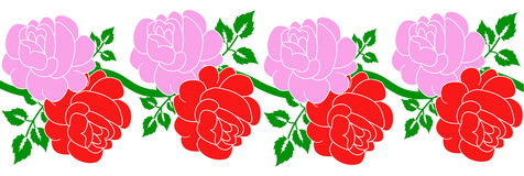 Rose red and pink Stock Photos