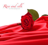 Rose on red silk Stock Image