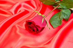 Rose on a red silk Stock Photography