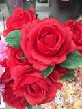 Rose red in vase. Rose red in vase for valentine day royalty free stock photo
