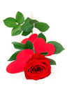 Rose rests with hearts made ​​of paper Royalty Free Stock Image