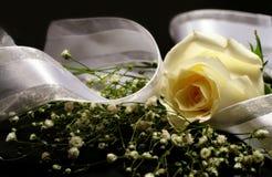 Rose And Ribbon Royalty Free Stock Image
