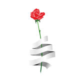 Rose with ribbon Stock Images