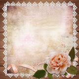 Rose with ribbon on vintage background Royalty Free Stock Photos