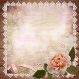 Rose with ribbon on vintage background stock illustration