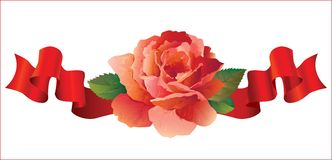 Rose with ribbons Royalty Free Stock Photography