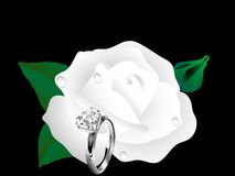 Rose and ring Royalty Free Stock Image