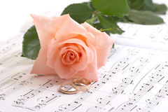 Rose, rings and notes Stock Image