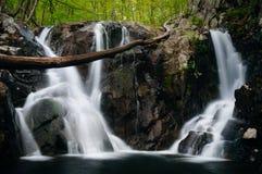 Rose River Falls i den Shenandoah nationalparken, Virginia Royaltyfria Bilder