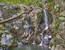 Rose River Falls, Nationalpark Shenandoah Lizenzfreies Stockbild