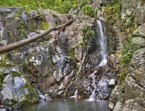 Rose River Falls, parco nazionale di Shenandoah Immagine Stock Libera da Diritti