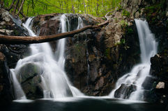 Rose River Falls, in Shenandoah National Park, Virginia. Royalty Free Stock Images