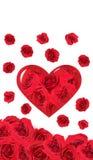 rose ro för kort Royaltyfri Bild