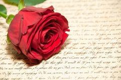 Rose roja con la carta Imagen de archivo libre de regalías