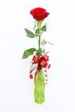 Rose roja en un florero Fotografía de archivo