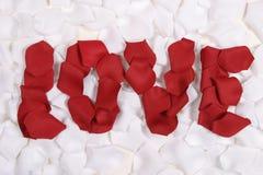 Rose roja pedals amor del deletreo Fotos de archivo