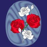 Rose roja y blanca en la tela, vector Fotografía de archivo libre de regalías