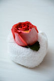 Rose on rolled up towel on bed. Romantic looking rose on a rolled up towel on a bed Royalty Free Stock Photography