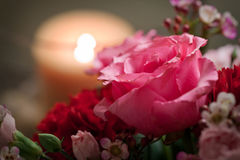 Rose romantique dans un agencement Photo stock