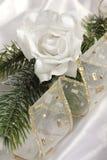 Rose romantique de blanc et branchement de fourrure-arbre (diagonal) Image libre de droits
