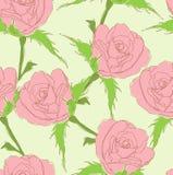 Rose rosa Immagini Stock Libere da Diritti