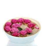Rose rosa in ciotola fotografia stock libera da diritti