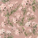 Rose rosa dell'acquerello su un fondo lilla Reticolo senza giunte floreale Fotografia Stock Libera da Diritti
