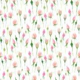 Rose rosa e beige di estate variopinta floreale adorabile elegante sveglia tenera delicata della molla con i germogli e le foglie Fotografia Stock Libera da Diritti