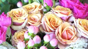 Rose rosa e beige stock footage