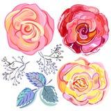 Rose rosa-rosso della pesca messe royalty illustrazione gratis