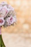 Rose rosa scure Immagini Stock Libere da Diritti