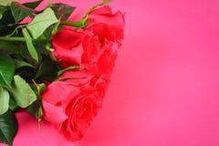 Rose rosa su un fondo rosa, su carta pastello Copi lo spazio per testo Modello per l'8 marzo, festa della Mamma Immagine Stock Libera da Diritti