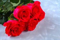 Rose rosa su un fondo grigio Copi lo spazio per testo Modello per l'8 marzo, festa della Mamma Fotografie Stock Libere da Diritti