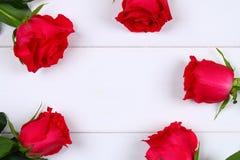 Rose rosa su una tavola di legno bianca Copi lo spazio per testo Modello per l'8 marzo, festa della Mamma, San Valentino Immagine Stock Libera da Diritti