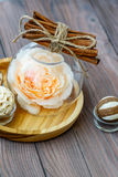 Rose rosa in un globo di vetro con vari elementi decorativi interessanti Fotografia Stock