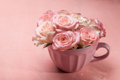 Rose rosa in vaso Immagine Stock